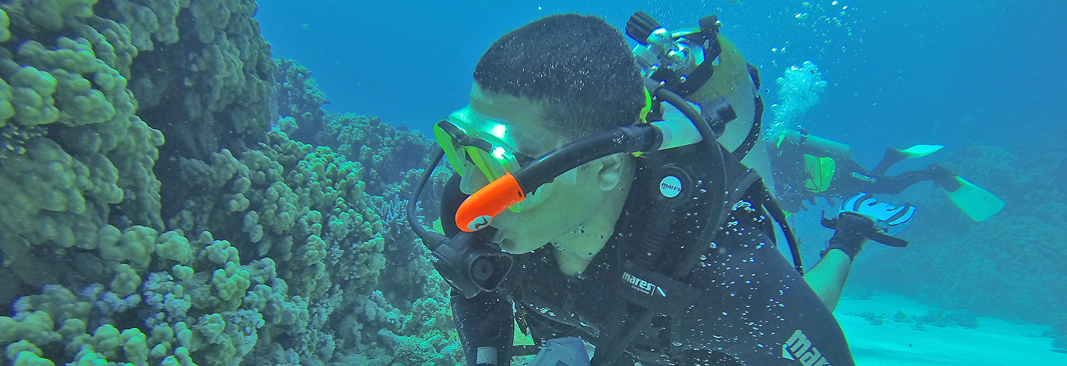 diving-and-snorkeling gombe.jpg